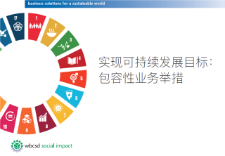 Wbcsd inclusive business sdgs chinese